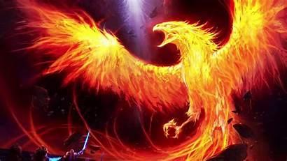 Phoenix Desktop Backgrounds Bird Wallpapers Fenix Background