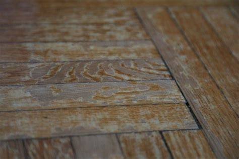 fix  friday wood floor woes   deal