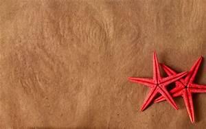 Starfish Wallpaper | HD Wallpapers Pulse