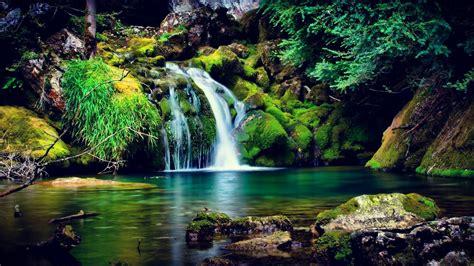 waterfall hd wallpaper garden  eden cool hd wallpapers