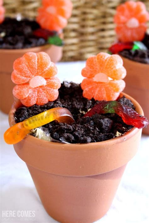 Dirt Cake Dirt Cake Recipe Perfect For Spring Here Comes The Sun