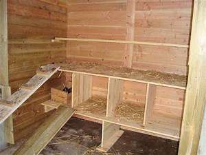 poulailler moderne au senegal poulailler With faire plan maison 3d 11 avoir un poulailler chez soi poulailler
