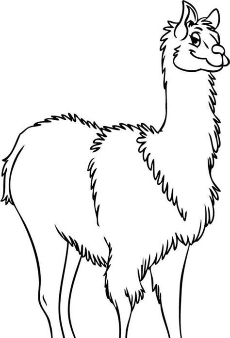 llama outline clipartsco