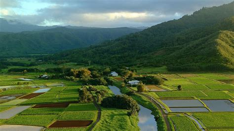 bureau vall tours the best kauai vacation packages 2017 save up to c590 on