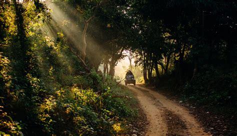 safari corbett national park jungle jim plan jeep step trip timings ideal zone choose types guide