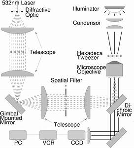 Optical Tweezer Arrays And Optical Substrates Created With