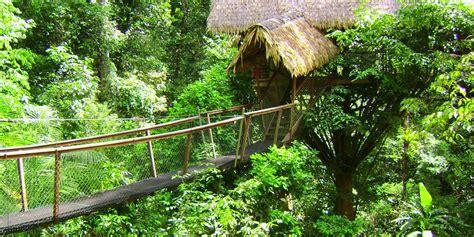 Cap Sur Le Camp Canopee  Guyane Evasion