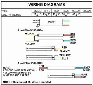 3 Bulb T8 Ballast Wiring Diagram For Free Download
