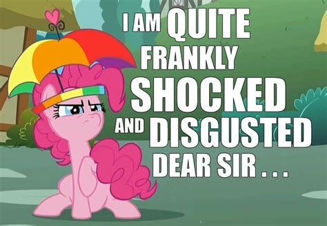 Ponies Meme - i am quite frankly shocked and disgusted dear sir pony reactions know your meme