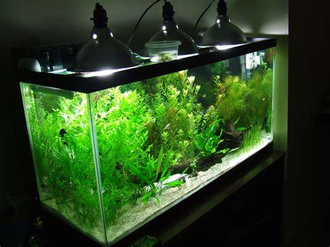 led aquarium lighting planted tank 55 gallon fish tank light bulb 55 gallon lighting