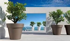 Plante D Intérieur Pas Cher : pot de jardin exterieur grand pot plastique pour plantes ~ Dailycaller-alerts.com Idées de Décoration