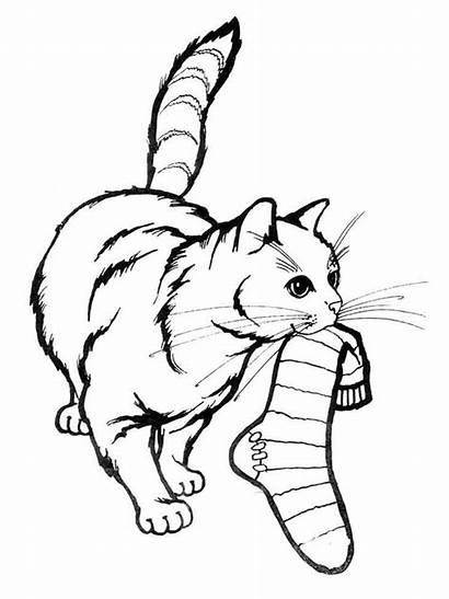 Coloring Pages Cats Animals Cat Printable Mycoloring