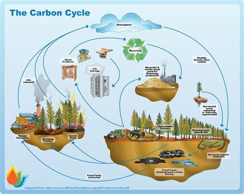 Biomass Carbon Cycle Biochar Pinterest