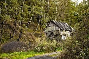 Altes Haus In Portugal Kaufen : alten verlassenen haus im wald stockfoto colourbox ~ Lizthompson.info Haus und Dekorationen