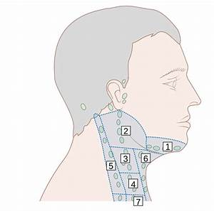 File Diagram Showing Where The Lymph Nodes Are In The Neck