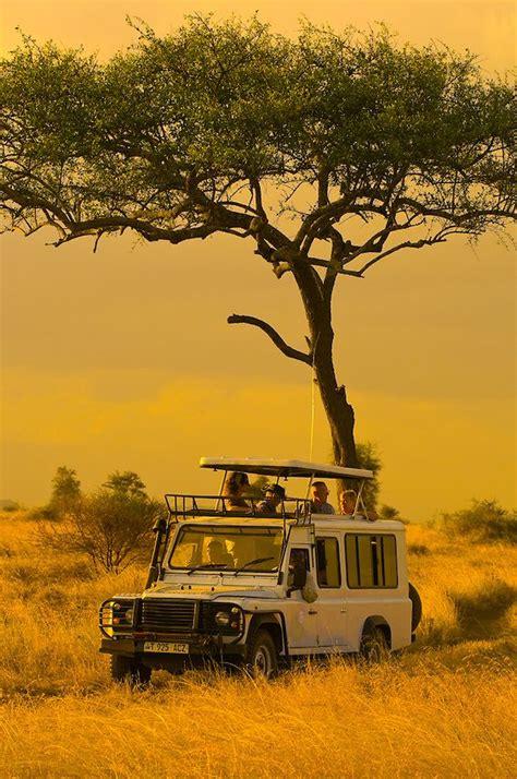 touring serengeti national park tanzania africa