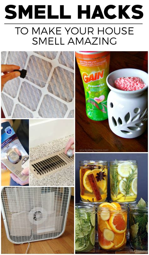 house smell good  hacks   house smell amazing