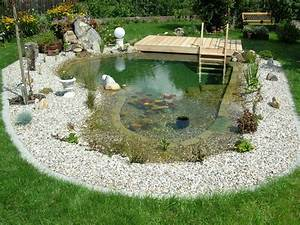 Karpfen Im Gartenteich : schwimmteich fotos schwimmteich bilder gartenteich ~ Lizthompson.info Haus und Dekorationen