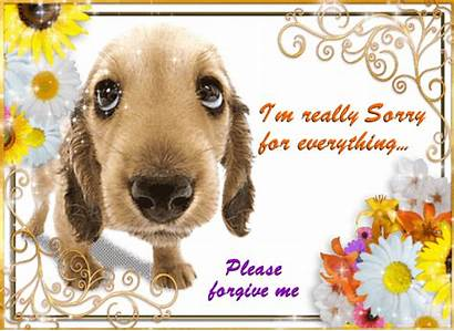Sorry Everything Im Cards Ecards Card 123greetings