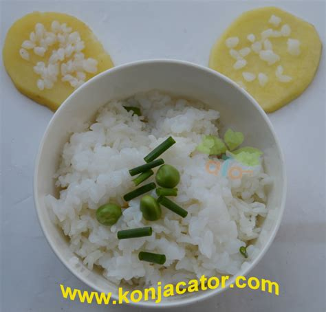 konjac cuisine organic shirataki noodles products china organic shirataki