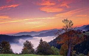 Sunset mountains trees fall landscape autumn fog sunrise ...