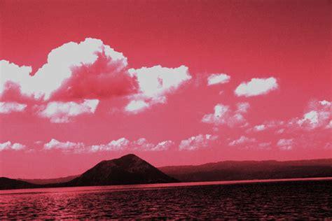 pink background nature  stock photo public domain