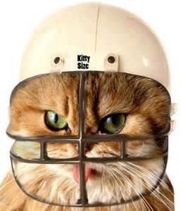 Funny Cat Football Helmet