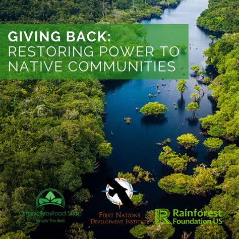 Giving Back: Restoring Power To Native Communities in 2020