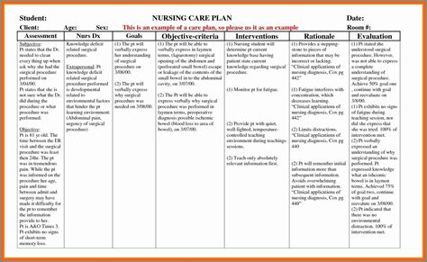 chronic care management care plan template template  resume examples wkyervd