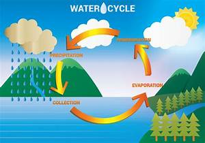 Water Cycle Diagram Vector