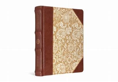 Bible Journaling Esv Board Cloth Floral Column