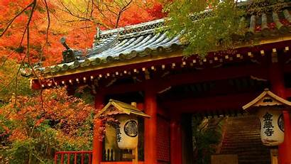 Japanese Oriental Asian Architecture Forest Nature Buildings