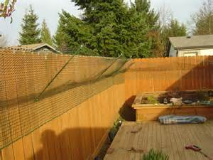 how to keep cats out of your yard catproof your yard
