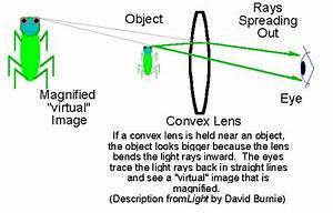 Optics For Kids