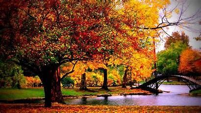 Desktop Unique Backgrounds Fall Wallpapers Autumn Park