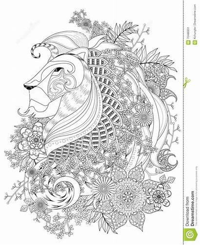 Lion Coloring Adult Kleurplaat Leeuw Adulte Pagina