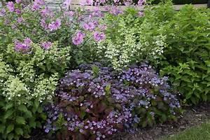 Welche Pflanzen Passen Gut Zu Hortensien : 281 besten blumenbeet bilder auf pinterest deko garten ~ Lizthompson.info Haus und Dekorationen