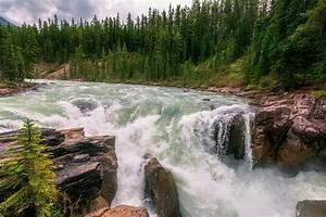 Lower Sunwapta Falls Jasper Alberta II Photograph by Joan