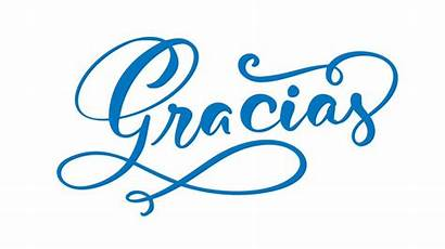 Gracias Spanish Thank Calligraphy Lettering Vector Background