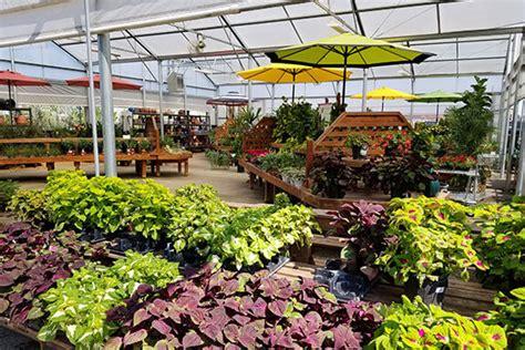 houston garden center best houston garden center kingwood tx warren s