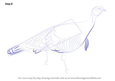 learn   draw  wild turkey birds step  step