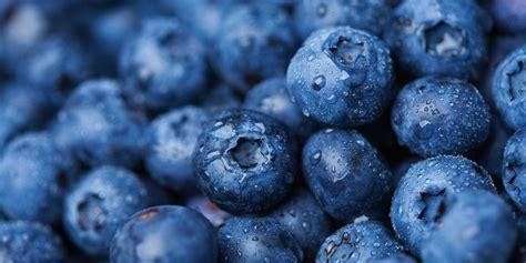 blueberries nutrition    eat  blueberries