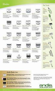25 best ideas about dog grooming on pinterest dog for Andis dog clipper blade guide