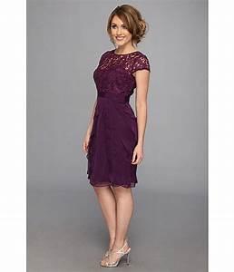 Adrianna Papell Lace Bodice Flutter Skirt Short Dress ...