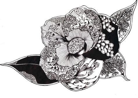 incredibly intricate paper cutting designs by hina aoyama