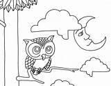 Coloring Night Pages Owl Owls Printable Animals Baby Cute Morning Clipart Adult Print Drawings Designlooter Saturday Popular Remodel Line Library sketch template