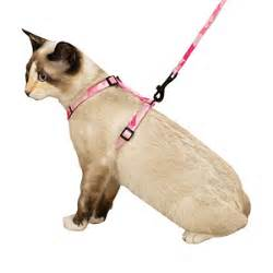 cat leashes savvy tabby camo cat harnesses and leashes baxterboo
