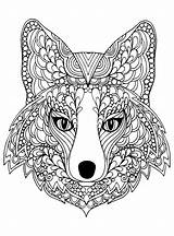 Coloring Wolf Printable Adults sketch template