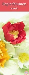 Papierblumen Aus Servietten : die besten 25 blumen aus papier ideen auf pinterest blumen papier blumen aus servietten und ~ Yasmunasinghe.com Haus und Dekorationen