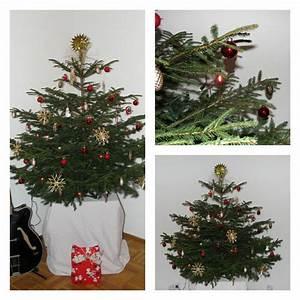 Lichterkette Weihnachtsbaum Anbringen : weihnachtsbaum schm cken der wohnsinn ~ Orissabook.com Haus und Dekorationen